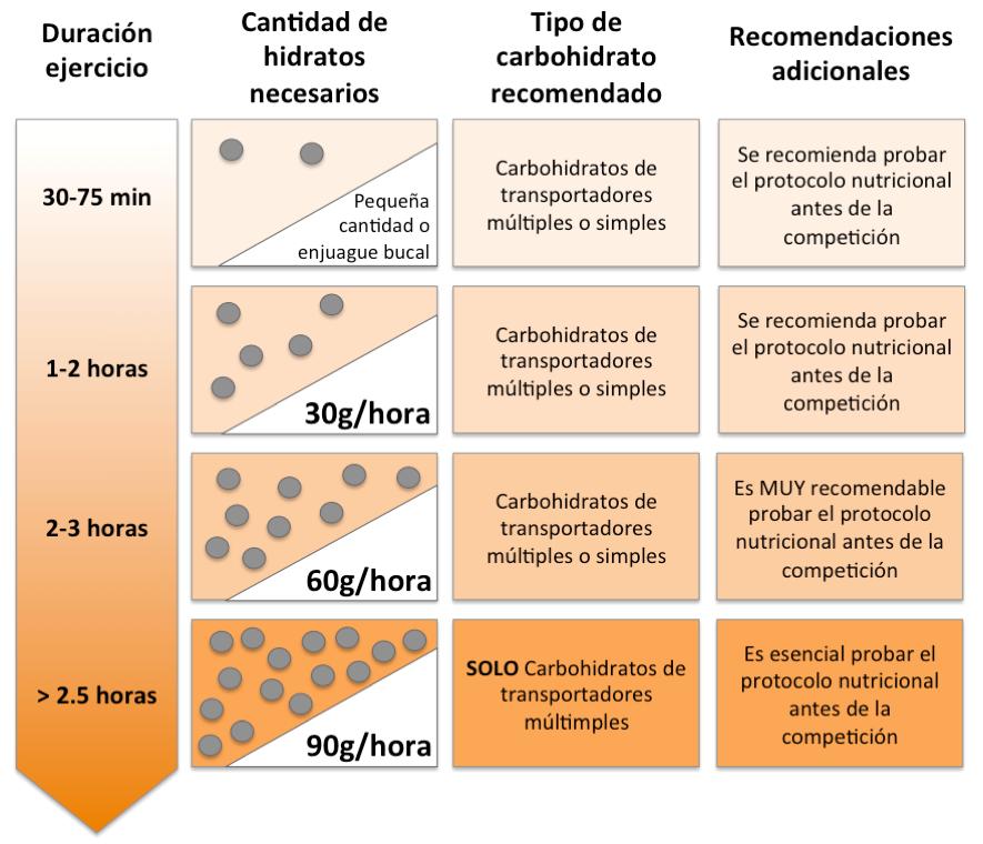 Guía de ingesta de carbohidratos propuesta por Jeukendrup